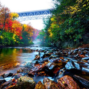 Hickory Run State Park - Local, State & National Parks - DiscoverNEPA