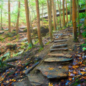 Seven Tubs Nature Area - Parks - Hiking - DiscoverNEPA