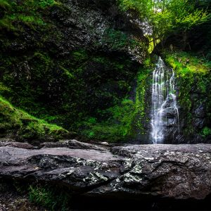 Delaware Water Gap National Recreation Area - DiscoverNEPA
